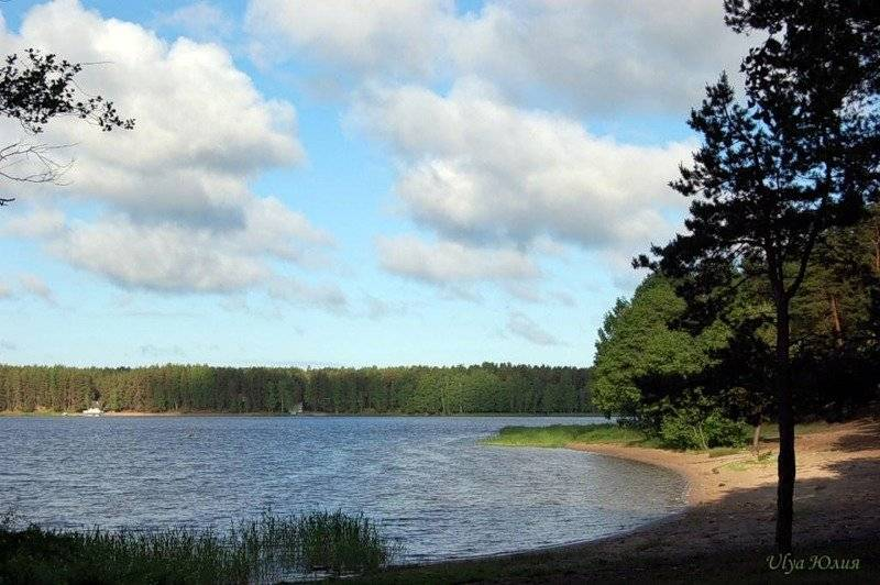 Кояшское и сасык-сиваш — соленые розовые озера