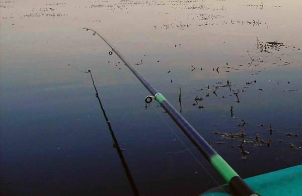Карась и боковой кивок - самоделки для рыбалки своими руками