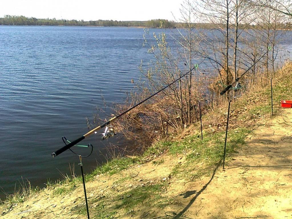 Сергиево-посадский район, хомяково: рыбалка платная, контакты, отзывы, как добраться?