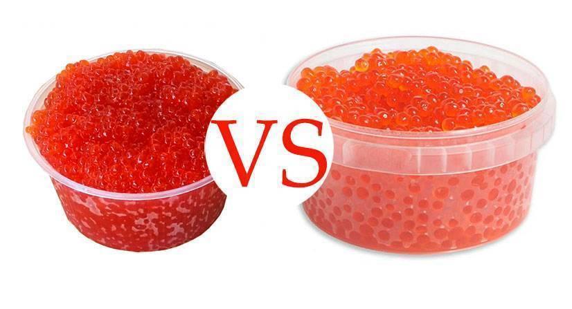 Чья икра из лососевых рыб крупнее, вкуснее, полезнее, дороже, ценнее — кеты, нерки, кижуча или горбуши: сравнение. красная икра: какая бывает, какая самая лучшая и чем отличается у разных лососевых рыб? лучше красная икра: крупная или мелкая?