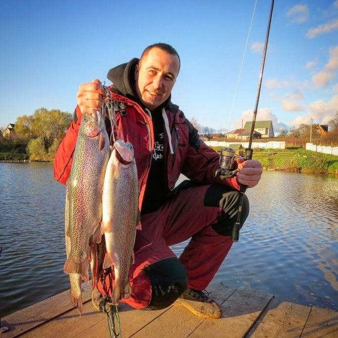Лучшие пруды, озера и реки для рыбалки в подмосковье