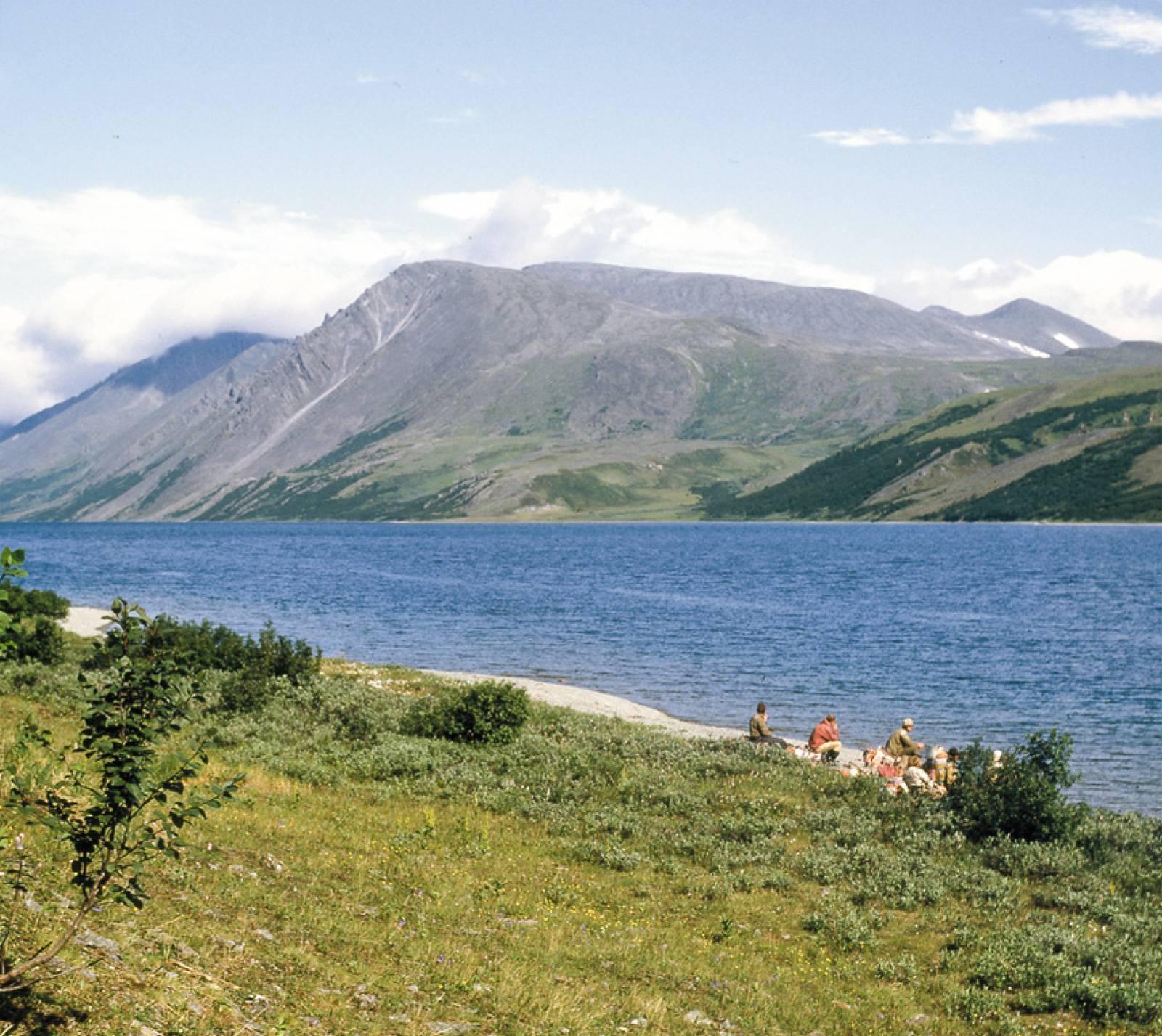 Озеро щучанское, курганская область. рыбалка, отдых, инфраструктура, фото, видео, как добраться — туристер.ру