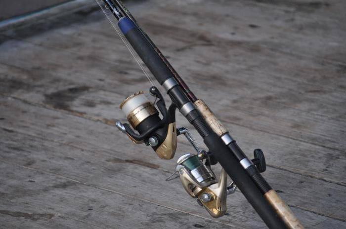 Виды удочек для летней рыбалки