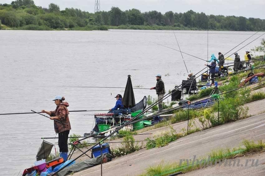 Рыбалка на спиннинг | спиннинг клаб - советы для начинающих рыбаков рыбалка на оке в нижнем новгороде :: обзор на spinningclub