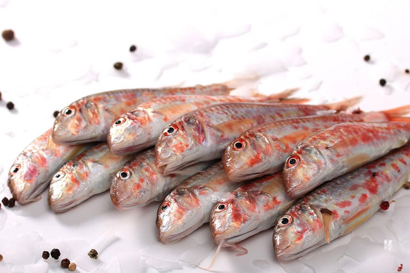 Барабулька, обитание,способы ловли и приготовления | рыбалка