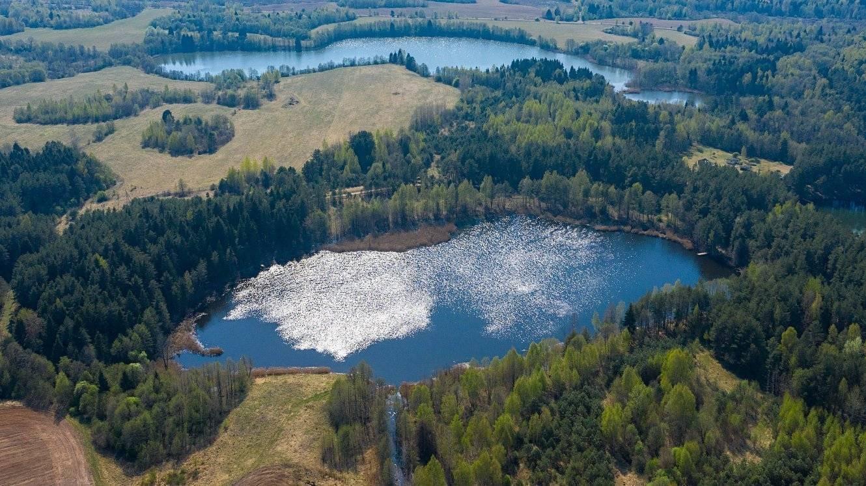 Озеро нерское, дмитровский район — рыбалка, фото, на карте, как подъехать, где находится