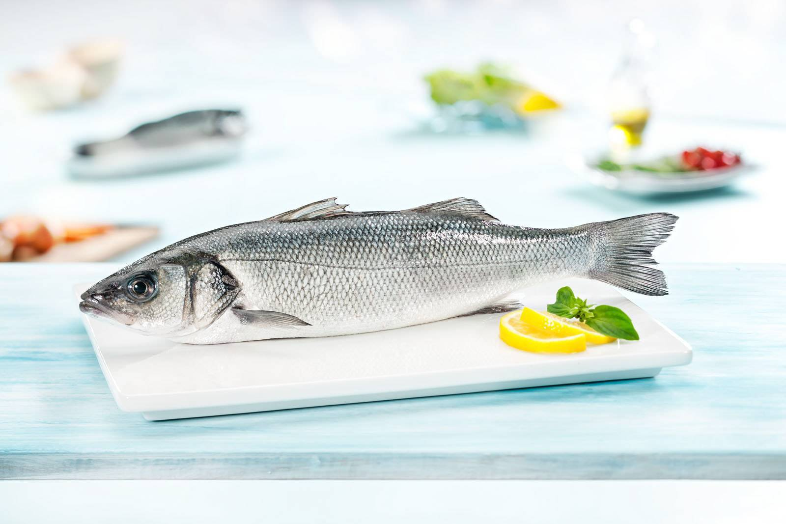 Черноморский сибас. незапланированная рыбалка