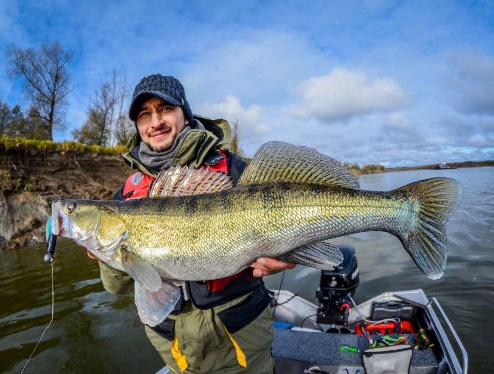 Рыбалка на реке хопёр