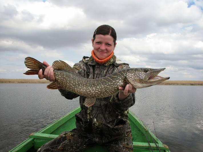 Рыболовно-охотничья база «застава» камызякский район, в астраханской области - цены 2020, фото, отзывы