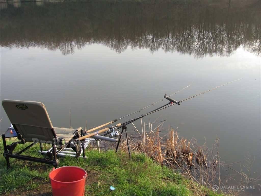 Фидерная ловля. фидер и пикер на стоячем водоеме с берега. часть 1