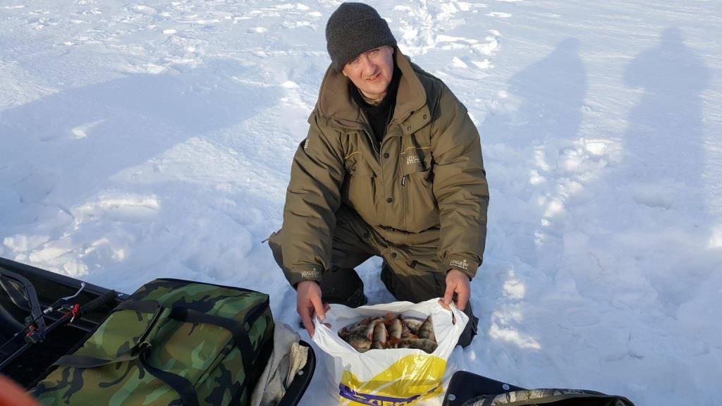 Рыбалка в омске и омской области: какая рыба водится, лучшие рыбные места