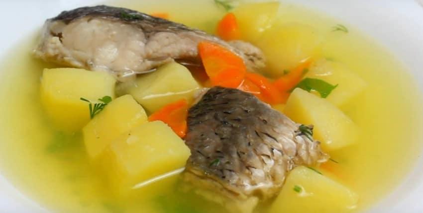 Уха из судака - рецепты с фото. как сварить вкусную уху из судака в домашних условиях пошагово