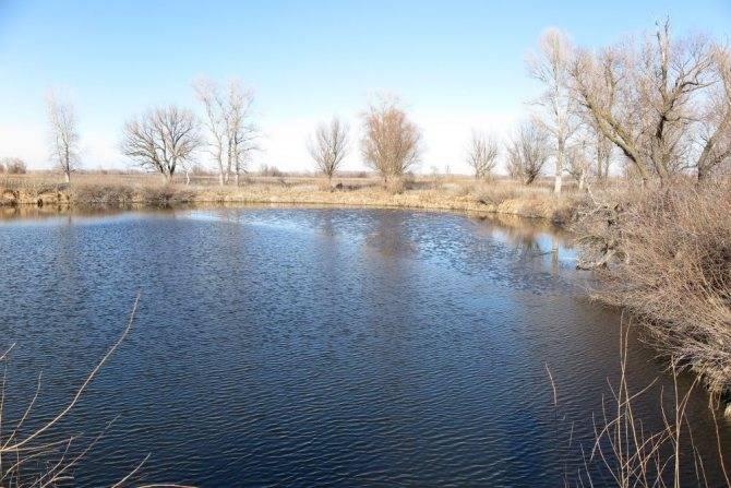 Температура воды в ахтубе (ахтубинск) сегодня. россия