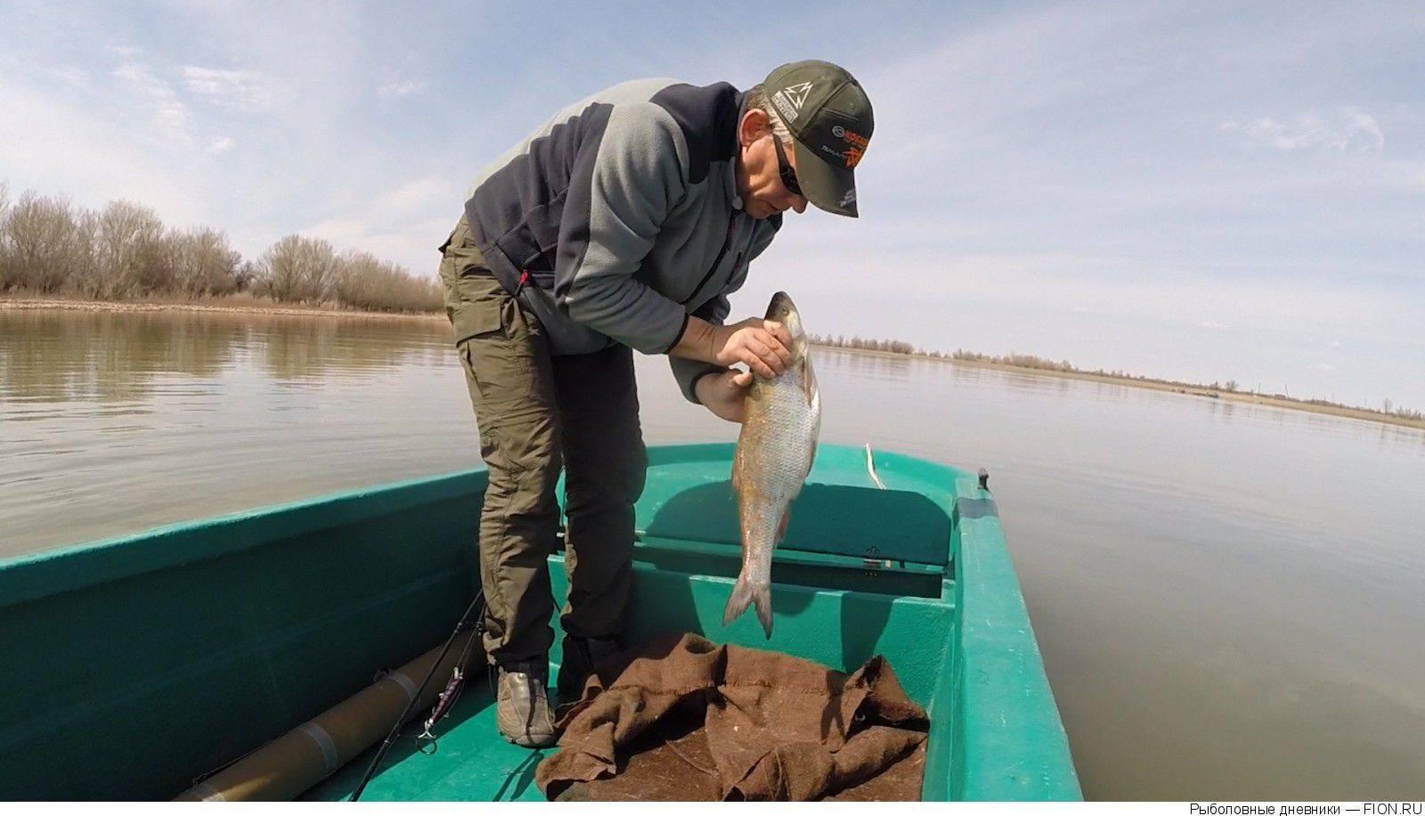 Рыбалка без посредников в астрахани