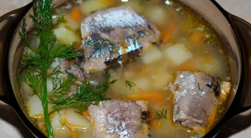 Суп из сайры: лучшие рецепты на любой вкус из консервированной рыбы для приготовления классического первого блюда с рисом, картошкой и без них, с перловкой, пшеном, в масле или томатном соусе, который подходит для детей и взрослых