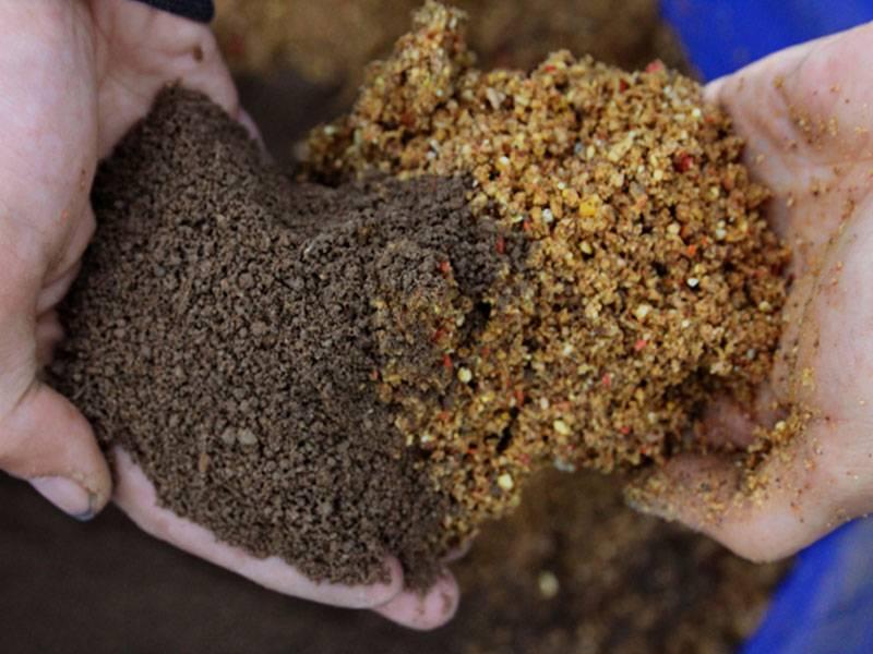 Прикормка для карпа: лучшие ароматизаторы и рецепты