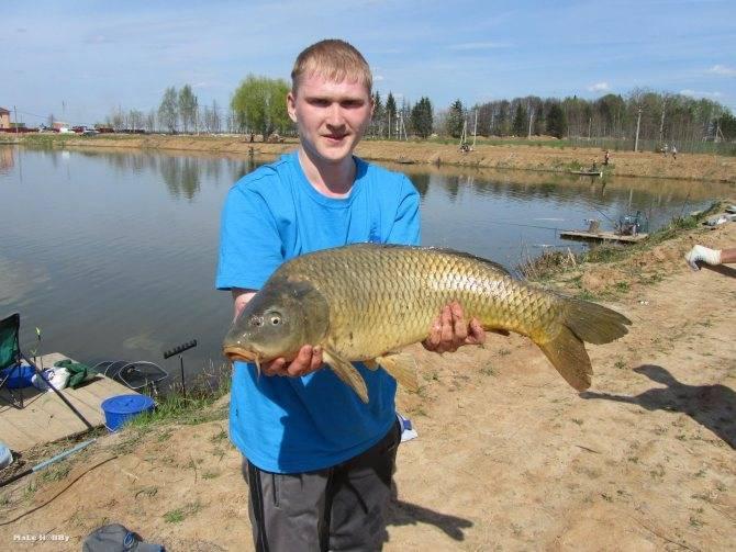 Рыбалка в московской области. реки, озера, водохранилища