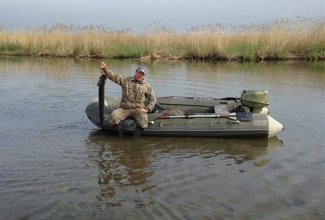 Ишим (река) — википедия