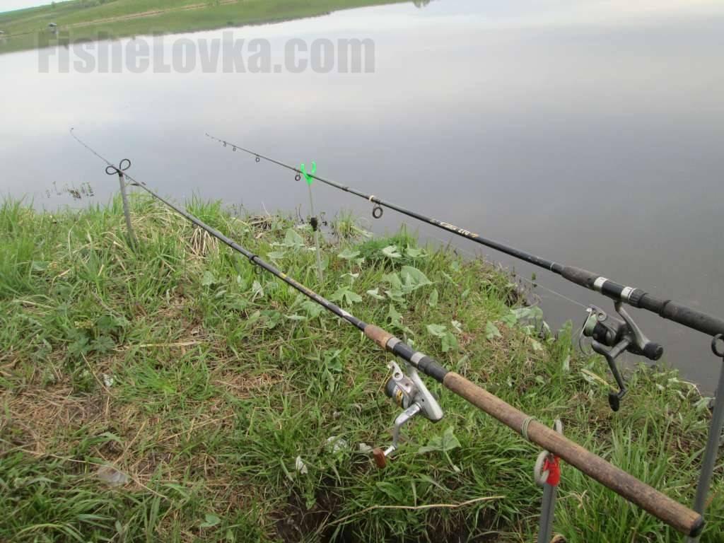Как найти перспективное место ловли на фидер | советы рыбакам