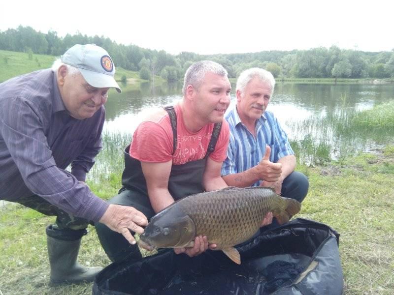Озера ульяновской области для отдыха, купания и рыбалки