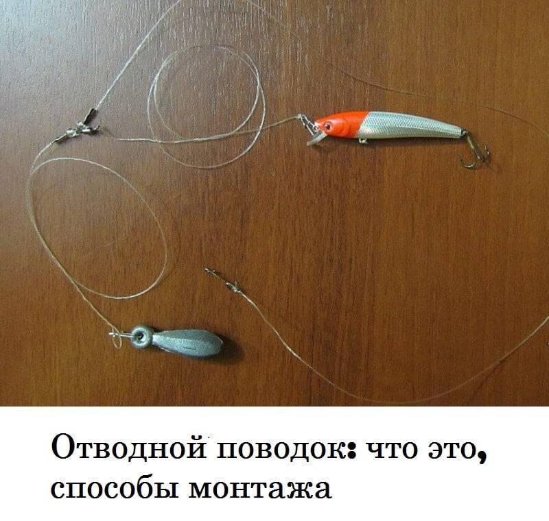 Отводной поводок на окуня - читайте на сatcher.fish