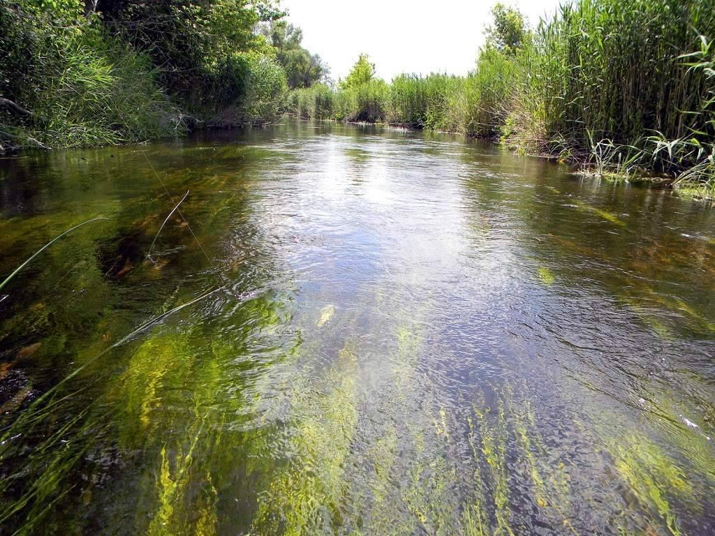 Куда поехать на рыбалку в волгоградской области