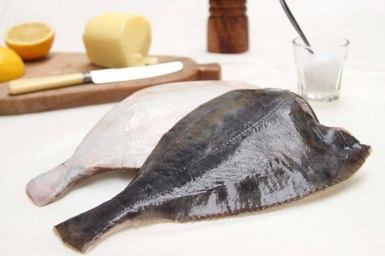 Рыба камбала. как разделать камбалу фото и видео от petr de cril'on