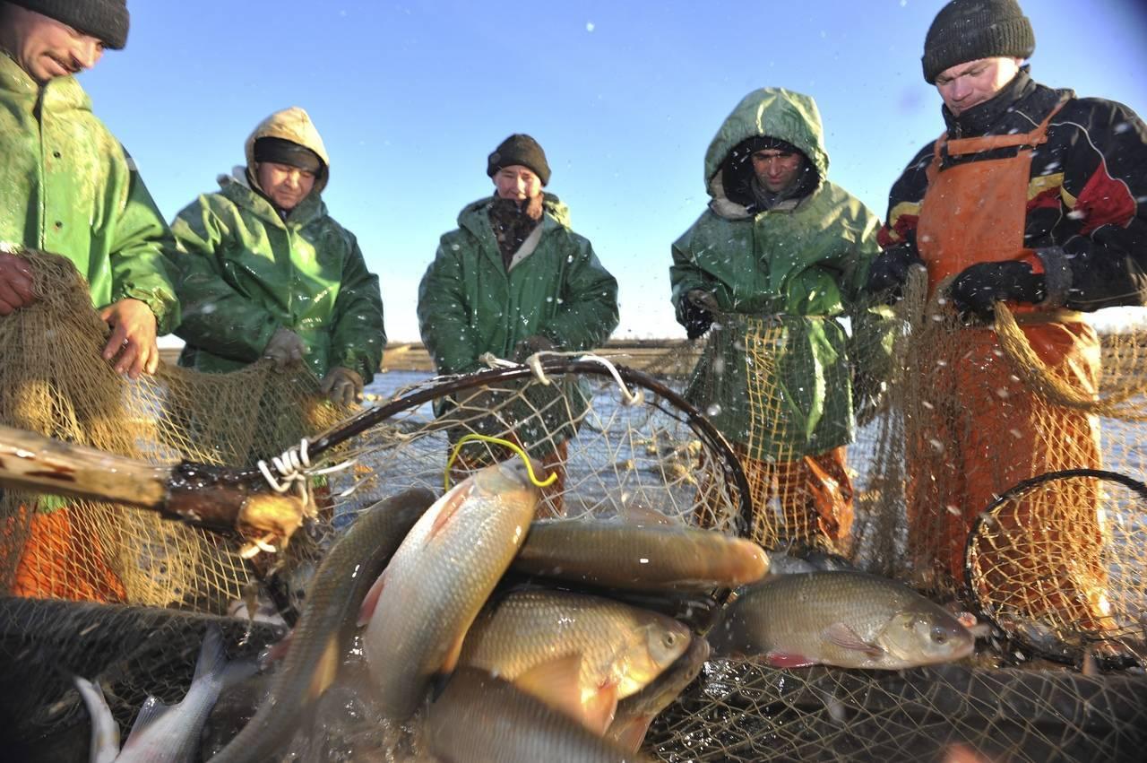 Рыбалка в ханты-мансийском автономном округе – югра: лучшие места на карте топ-10