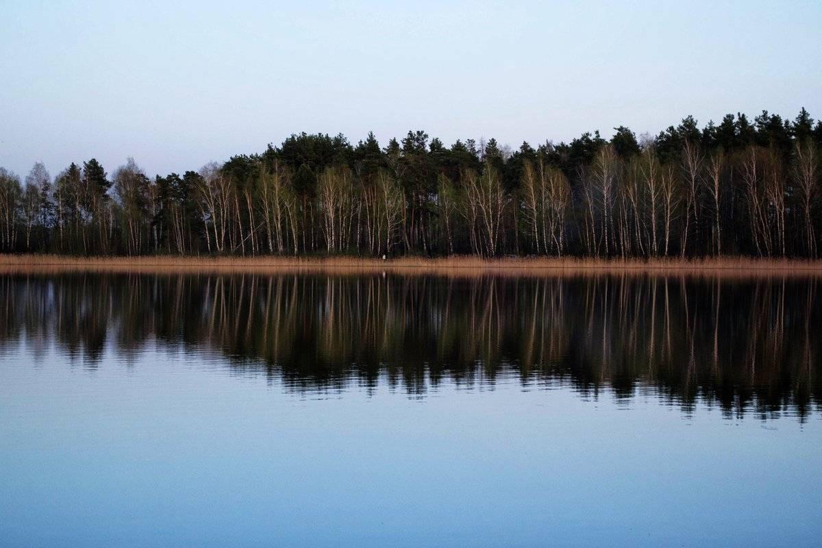 Захват красногвардейского озера! >> петербургский блог >> городской портал санкт-петербурга: новости, погода, афиша, работа, объявления