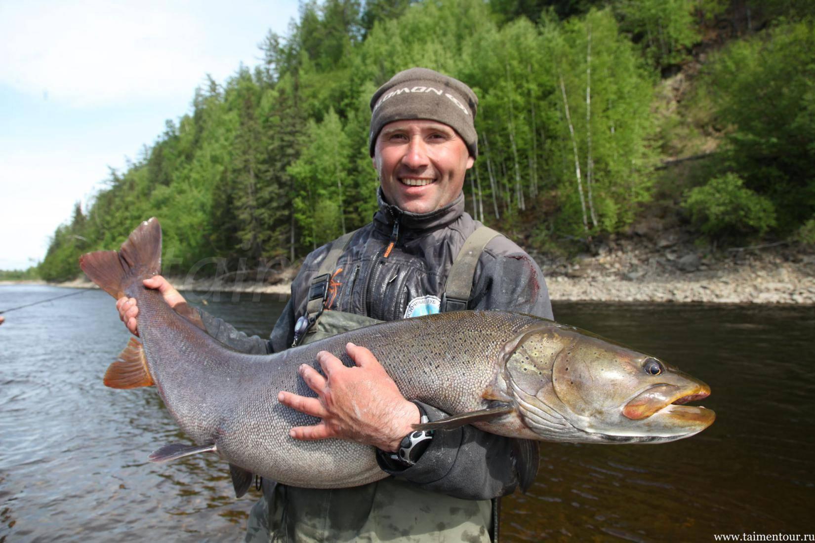 Рыбалка в красноярске и красноярском крае