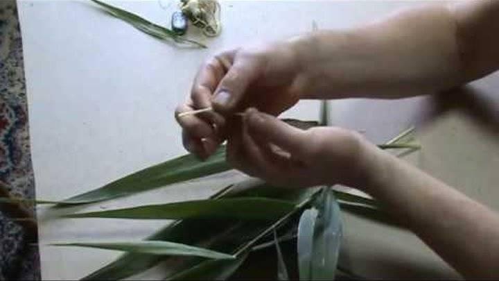 Ловля белого амура на фидер, подбор кормушки, приманок и насадок