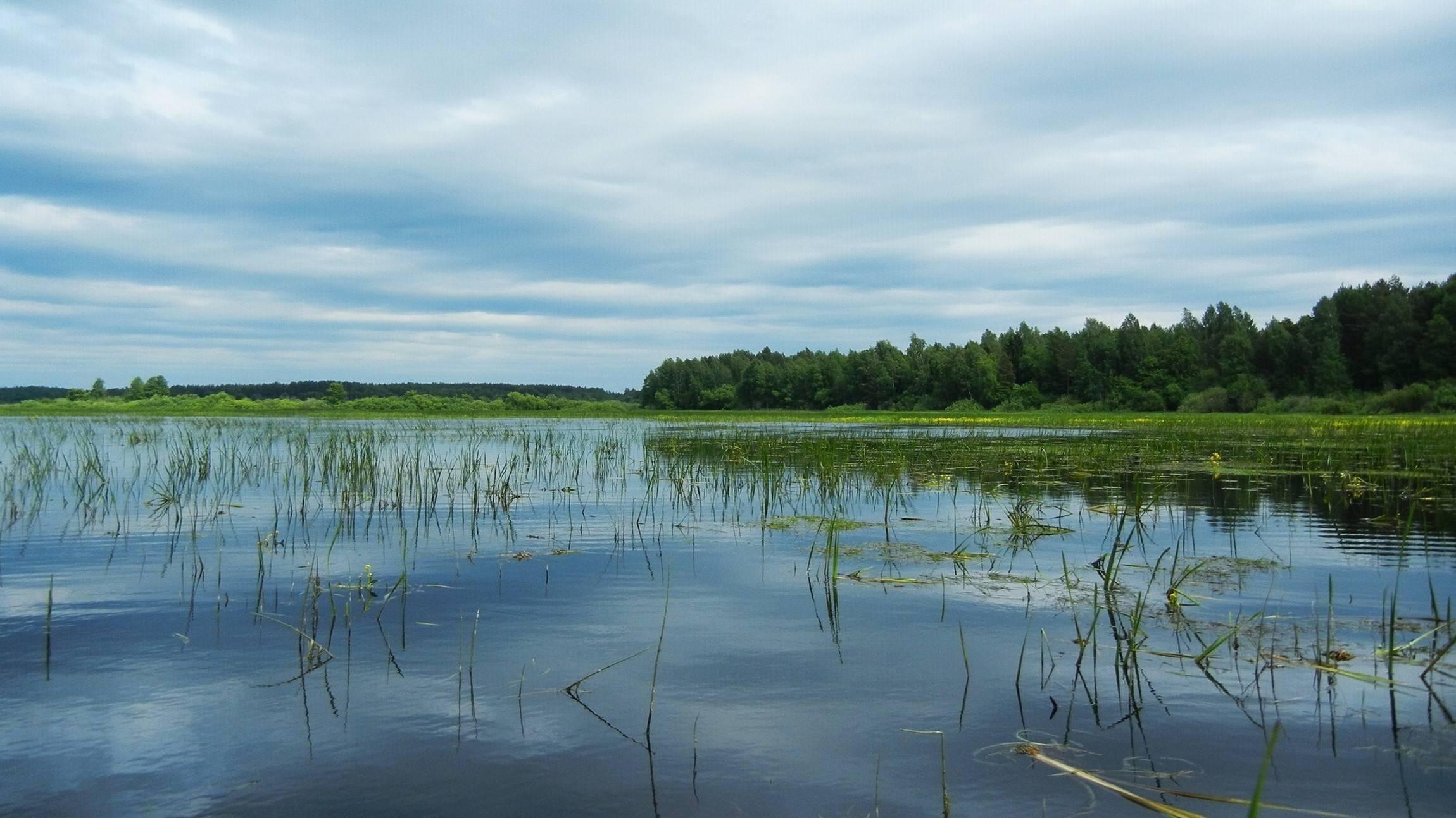 Рыбалка в рязанской области - озера, реки, водохранилища, платные места