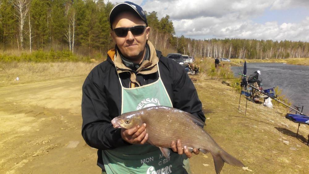Белоярское водохранилище — карта рыбных мест, особенности рыбалки, какая рыба водится