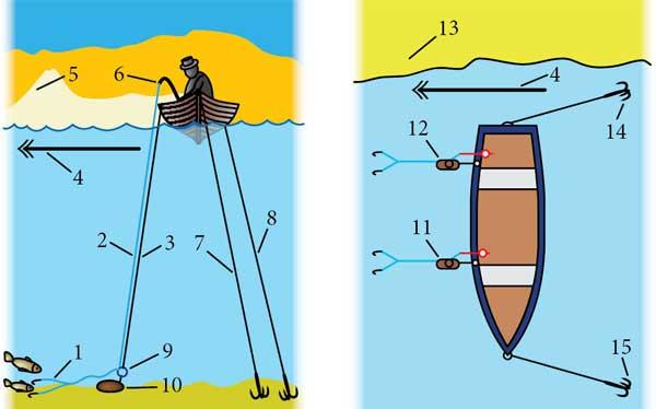Ловля на яйца: интересная снасть для лова рыбы, описание