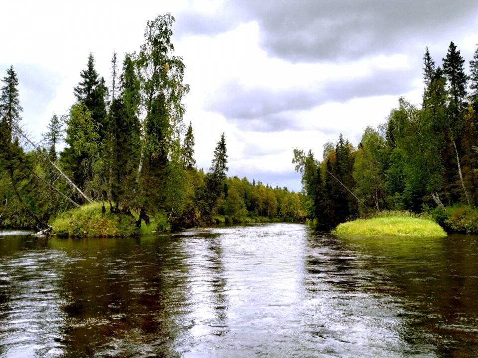Рыбалка в архангельской области - читайте на сatcher.fish