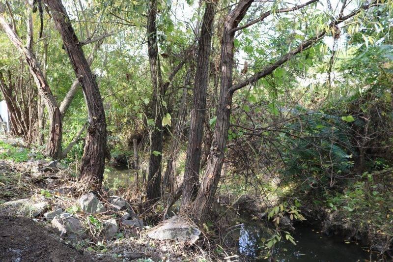 Glavotchet, наши отчеты. река пра