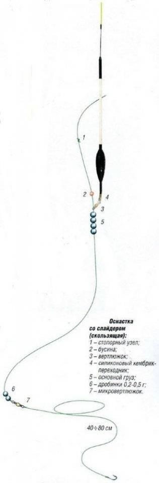 Рыбалка на карася - ловля на поплавочную удочку: правильная оснастка и техника ловли
