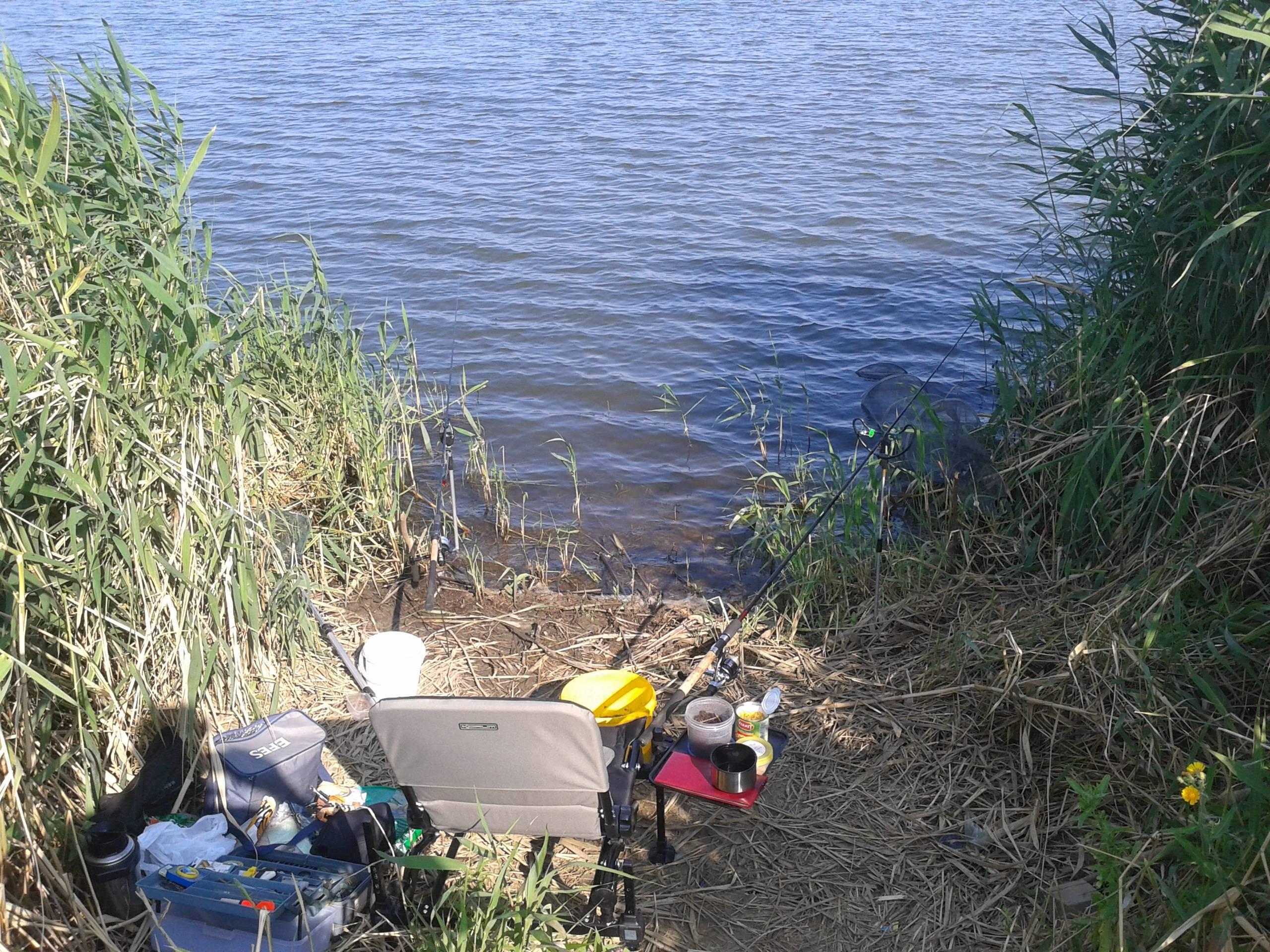 Летняя и зимняя рыбалка в саратовской области: платные и бесплатные места