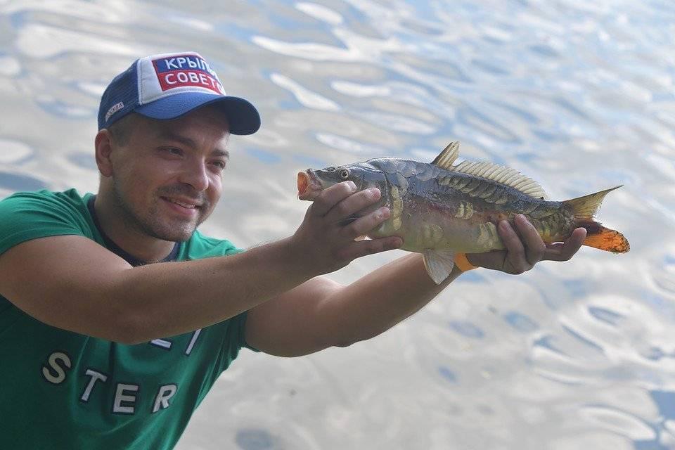 Рыбалка в челябинской области   (74) карта рыболовных мест