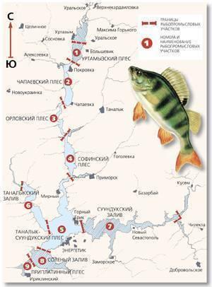 Рыбалка на белоярском водохранилище: места и особенности