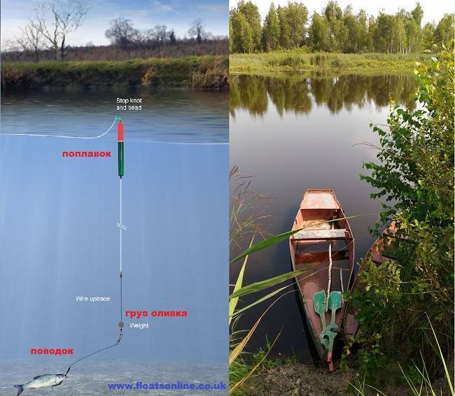 Ловля щуки на поплавочную удочку с живцом: подготовка снасти