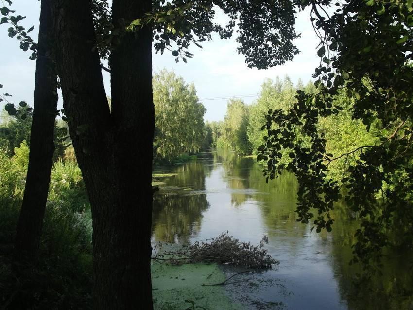 Рыбалка в люберецком районе (г.о. люберцы). форум и отчеты