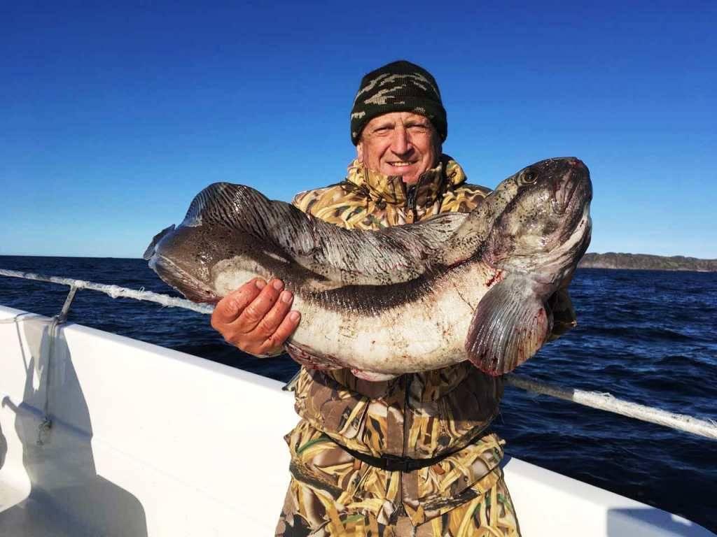 Места для рыбалки в мурманской области – платная и бесплатная рыбалка!