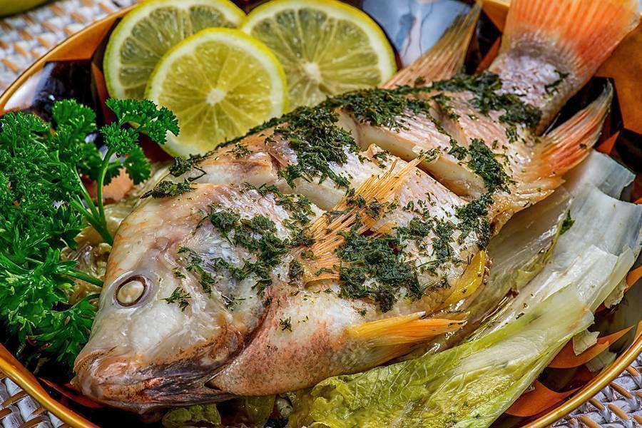 Простипома: характеристика рыбы и ее отличие от пентацегер, рецепт приготовления
