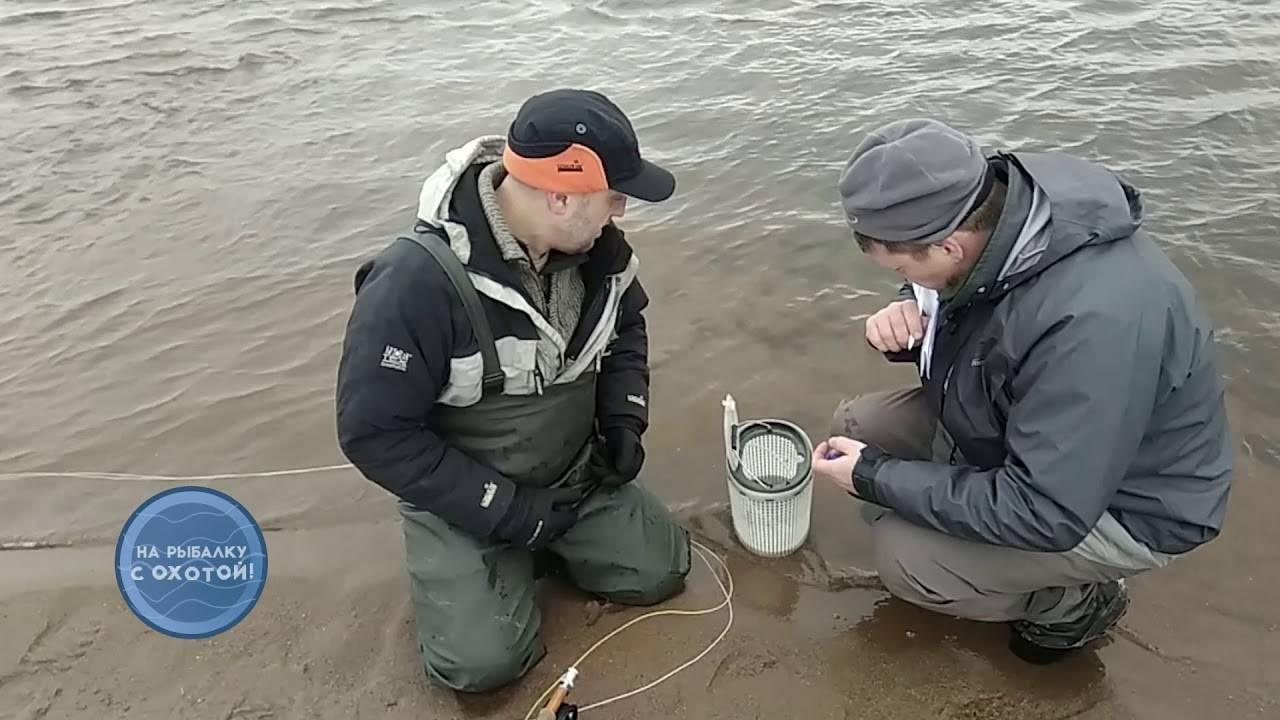 Топ-10 каналов о рыбалке на ютубе: версия netobserver.ru