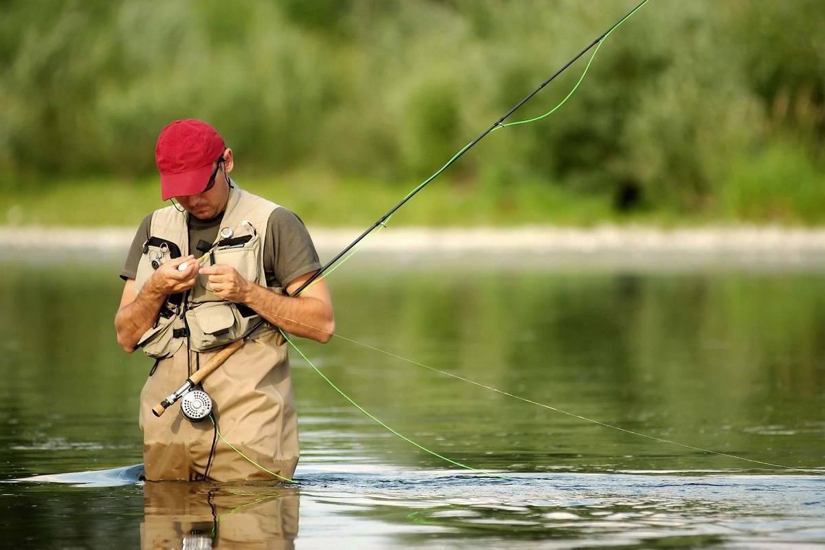 Ловить рыбу во сне - 15 толкований сна с учетом деталей - сонник: ловить рыбу