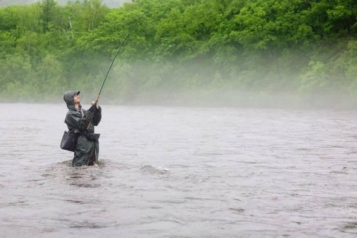 Почему рыба не клюет?