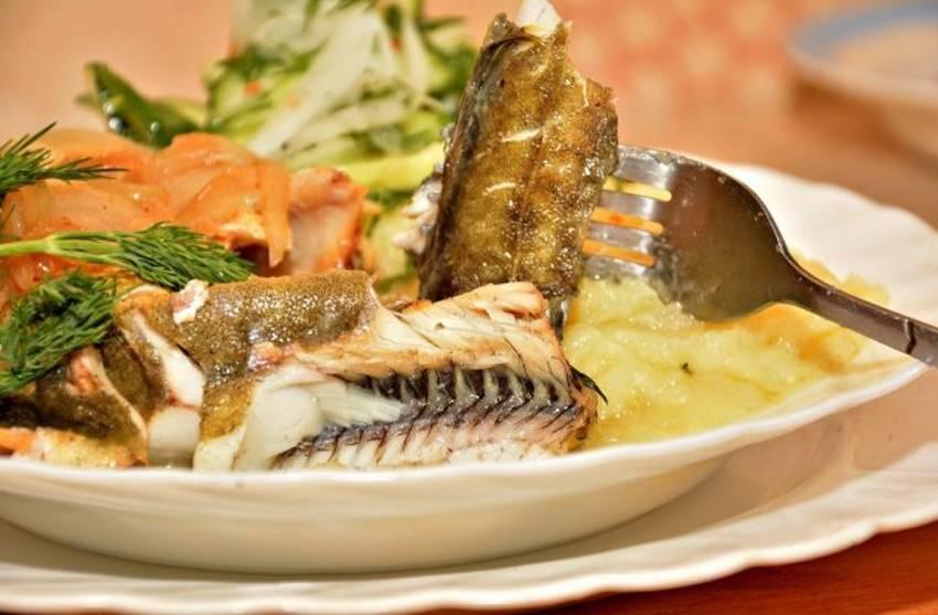 Рыба треска?: фото и описание. как выглядит треска?, чем питается и где водится