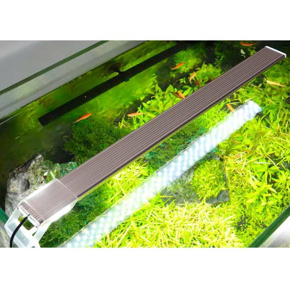 Особенности освещения аквариума и травника светодиодными прожекторами и светильниками: как выбрать, закрепить, сделать самому