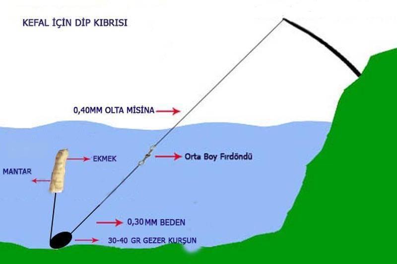 Как ловить кефаль в Черном море с берега и лодки